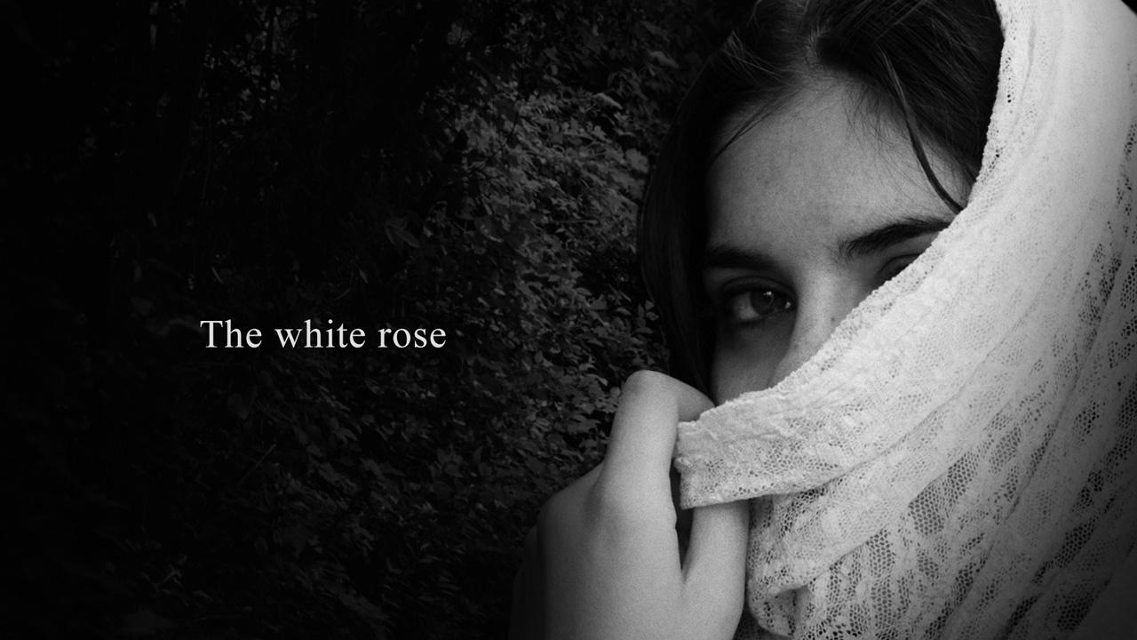 the white rose short film by riccardo mei